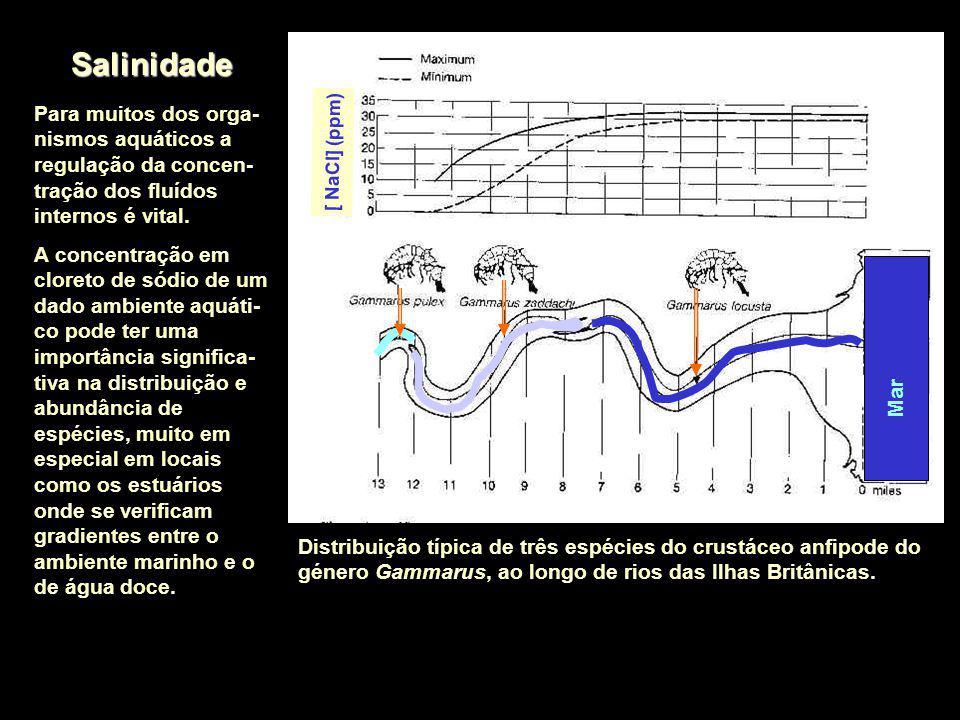 Salinidade [ NaCl] (ppm) Para muitos dos orga-nismos aquáticos a regulação da concen-tração dos fluídos internos é vital.